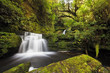 Постер, плакат: Small falls downstream from Mclean Falls Catlins New Zealand
