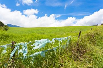 paysage de campagne, pollution par les plastiques