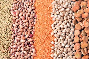 various types of legumes lentil beans Peas vegetable