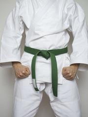 Kampfsport Kämpfer grüner Gürtel Anzug_hoch