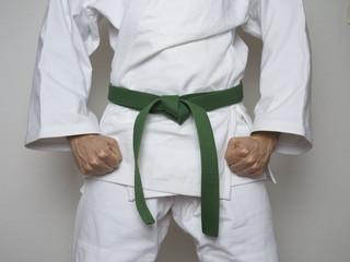 Kampfsport Kämpfer grüner Gürtel Anzug