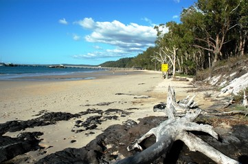 Fraser Island, Australie 4