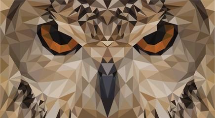 Triangulum Bubo