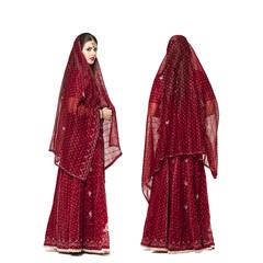 Young traditional Asian Indian woman in indian sari