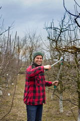 Pruning fruits
