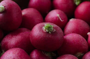 Piled Up Radishes - Close Up