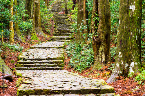 Kumano Kodo Trail at Daimon Slope in Nachi, Japan - 78706369