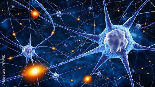 nerve cells poster