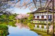 Kyoto, Japan at Heian Shrine's Pond