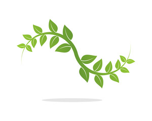 Leaf Wave Branch Tree