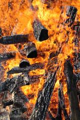 Fire, heap of wooden logs burning outdoor