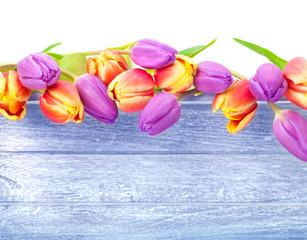 Tulpen, Holz, Karte