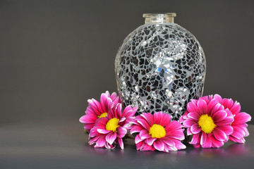 Pink flowers with black vase