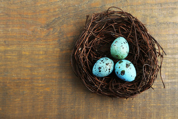 Bird blue eggs in nest on wooden background