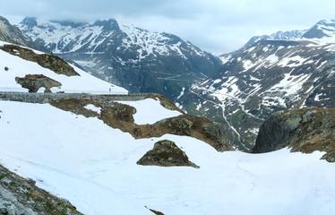 Summer mountain landscape (Grimsel Pass, Switzerland)