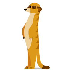 Cartoon Meerkat Isolated On Blank Background