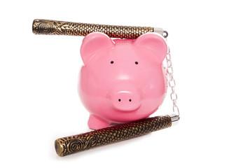 ninja piggy bank