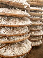 Baskets with silkworm cocoons at a silk factory