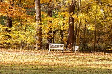 Sitzbank im Herbst