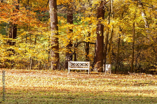 canvas print picture Sitzbank im Herbst