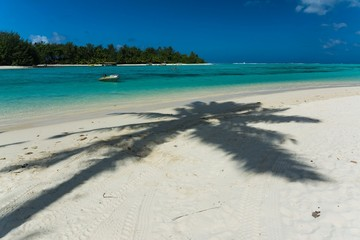 aircraft landing photographed from jetblast area on cook islands