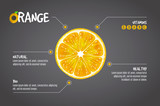 Orange infographics. Citrus fresh fruits vector illustration