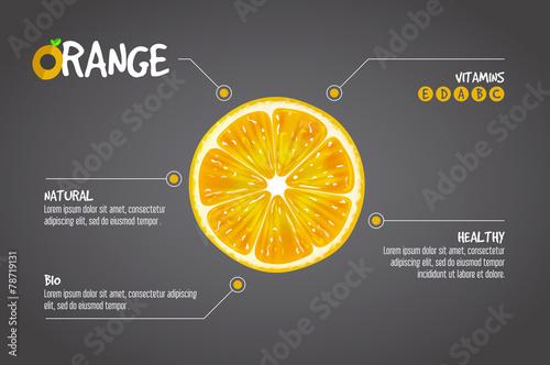 Fototapeta Orange infographics. Citrus fresh fruits vector illustration