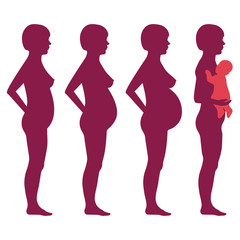 vector pregnancy stages, pregnant woman silhouette,
