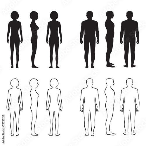 Fototapeta human body anatomy,front vector man, woman silhouette