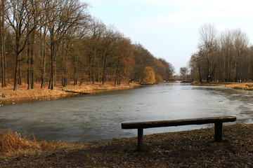 samotna ławka w parku