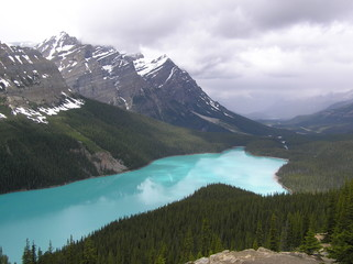 Emerald green Peyto Lake, Banff National Park