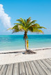 Tropical Beach and deck