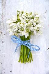 Grußkarte - Frühling - Schneeglöckchen © S.H.exclusiv