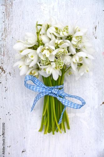 Staande foto Lente Grußkarte - Frühling - Schneeglöckchen