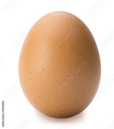 Deurstickers Egg Brown egg isolated on white background.