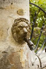 Metal lion head spout