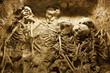 Ancient grave - 78729146