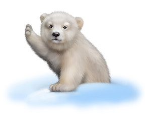 Portrait of a polar bear baby climbing out of a snow pile