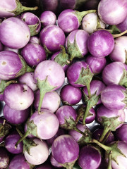 Fresh eggplant Background