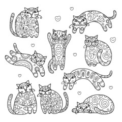 Art cats with floral ornament for your design