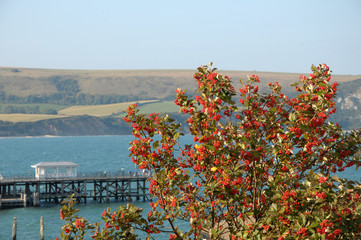 View over Swanage in Dorset from Peveril Point