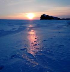Animal tracks on snow under winter sunset