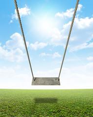 Rope Swing On Green Field
