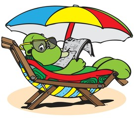 turtle relaxing at the seaside