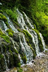 Wellspring and cascade at Tara mountain and national park