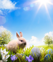 Easter bunny and Easter eggs on spring field
