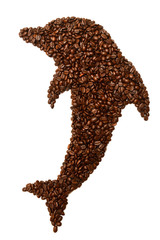 Dolphin is laid out coffee beans