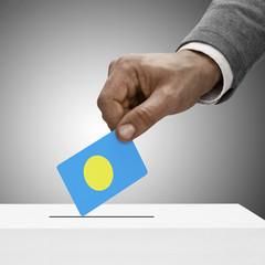 Black male holding flag. Voting concept - Palau
