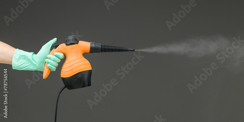 hand held steam cleaner - 78756544