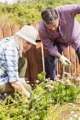 Happy mature couple gardening together